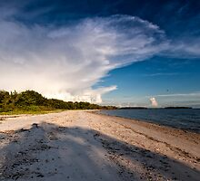 the beach by james smith