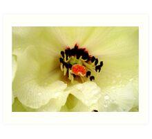 Rhododendrum Beauty Art Print