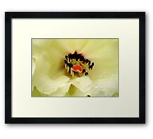 rhododendrum beauty Framed Print