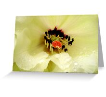 Rhododendrum Beauty Greeting Card