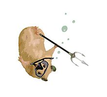 Just Your Average Snorkeling Hamster With A Trident Photographic Print