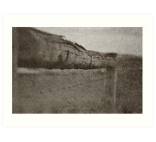 The Barbed Wire Fence Art Print