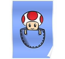 Pocket Toad Poster