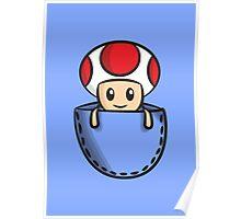 Pocket Toad Poster