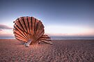 Scallop Sculpture by Nigel Bangert