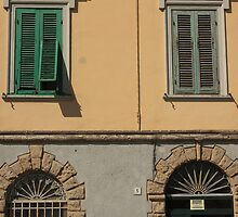 Feature facade with windows by orsinico