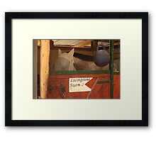 The entrance to the barn Framed Print
