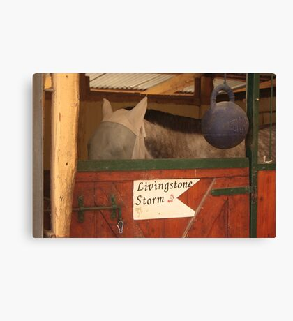 The entrance to the barn Canvas Print