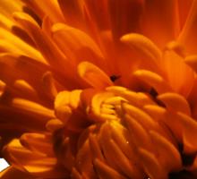 Autumn Flower Sticker