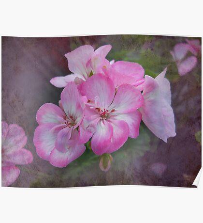 Pretty Blossoms Poster