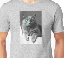 Green Eyed Gray Cat Unisex T-Shirt