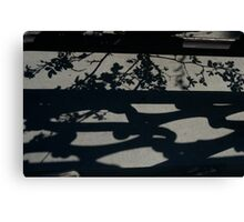 The Filigree of Nature and the Hand of Man in Shadow Canvas Print