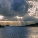 Halki Rays by Tom Gomez