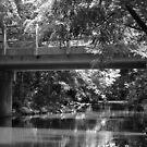 Bridge over Water by virginian