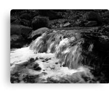 Water in Black and White Canvas Print