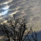 Sun and Clouds by virginian