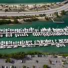 Miami: Hobie Island Harbour by Kasia-D