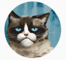 Grumpy Cat by bliz