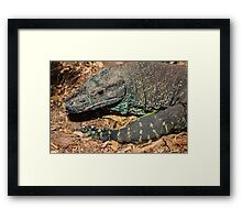 Protector of the Land Framed Print