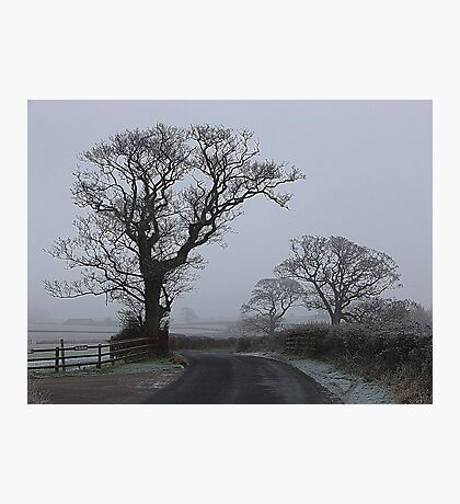 a Foggy Day. Photographic Print