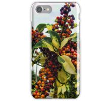 Ripening into the Maroon Nineteen iPhone Case/Skin