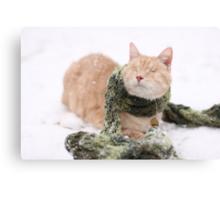 Gumbo in Snow Canvas Print