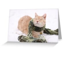 Gumbo in Snow Greeting Card