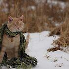 Gumbo Sitting in Snow by wee3beasties