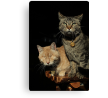 Gumbo & Mr. Grigsby Canvas Print