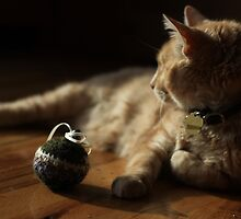 Gumbo by Catnip Ball by wee3beasties