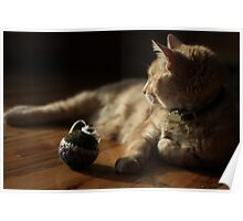 Gumbo by Catnip Ball Poster