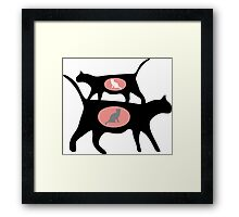 FERAL CAT COLONY  Framed Print