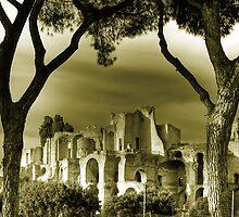 Circus Maximus ruins in Rome travel historic fine art gold tone wall art landscape from Italy - Urla nel silenzio   by visionitaliane