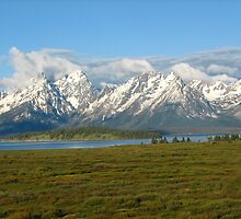 Grand Tetons by Bryana Fern