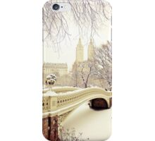 Winter in Central Park iPhone Case/Skin