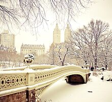 Winter in Central Park by Vivienne Gucwa