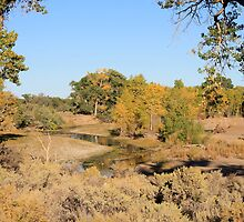 Carson River, thru Dayton Nevada USA by Anthony & Nancy  Leake