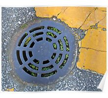 round grate Poster