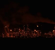 Refinery Complex by Dorothy  Pinder