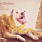 A Golden Christmas  by Zdogs