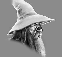 Gandalf by Erin Quinn