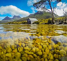 Dove Lake by Russell Charters