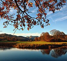 The River Brathay by FyldePhotos