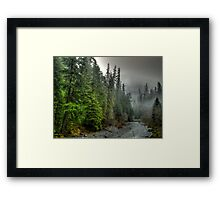 In Deep Thought ~ Quartzville Creek ~ Framed Print