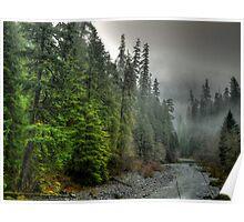 In Deep Thought ~ Quartzville Creek ~ Poster