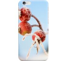 Frosty hips iPhone Case/Skin
