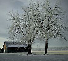 Snow On The Barn  by Charles & Patricia   Harkins ~ Picture Oregon