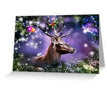 Merry Christmas and Happy New Year ,to everyone members RB. Greeting Card