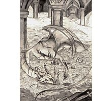 Smaug the Magnificent Photographic Print