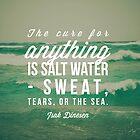 Salt Water Cure by Olivia Joy StClaire
